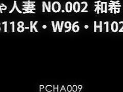 BBW Japanese PCHA-009