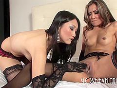 Evelyn Lin and Kara Tai - Lingerie Kittens - stockings foot feet asian nylon toys dildo lesbian